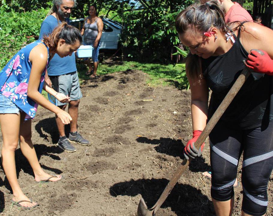 Découverte de l'agriculture biologique par des employés de la société Vini